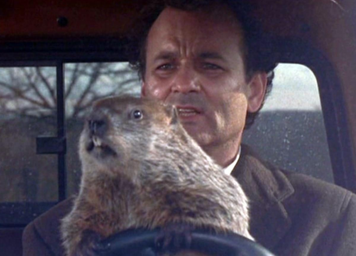gal-groundhog-day-murray2-1200x864.jpg